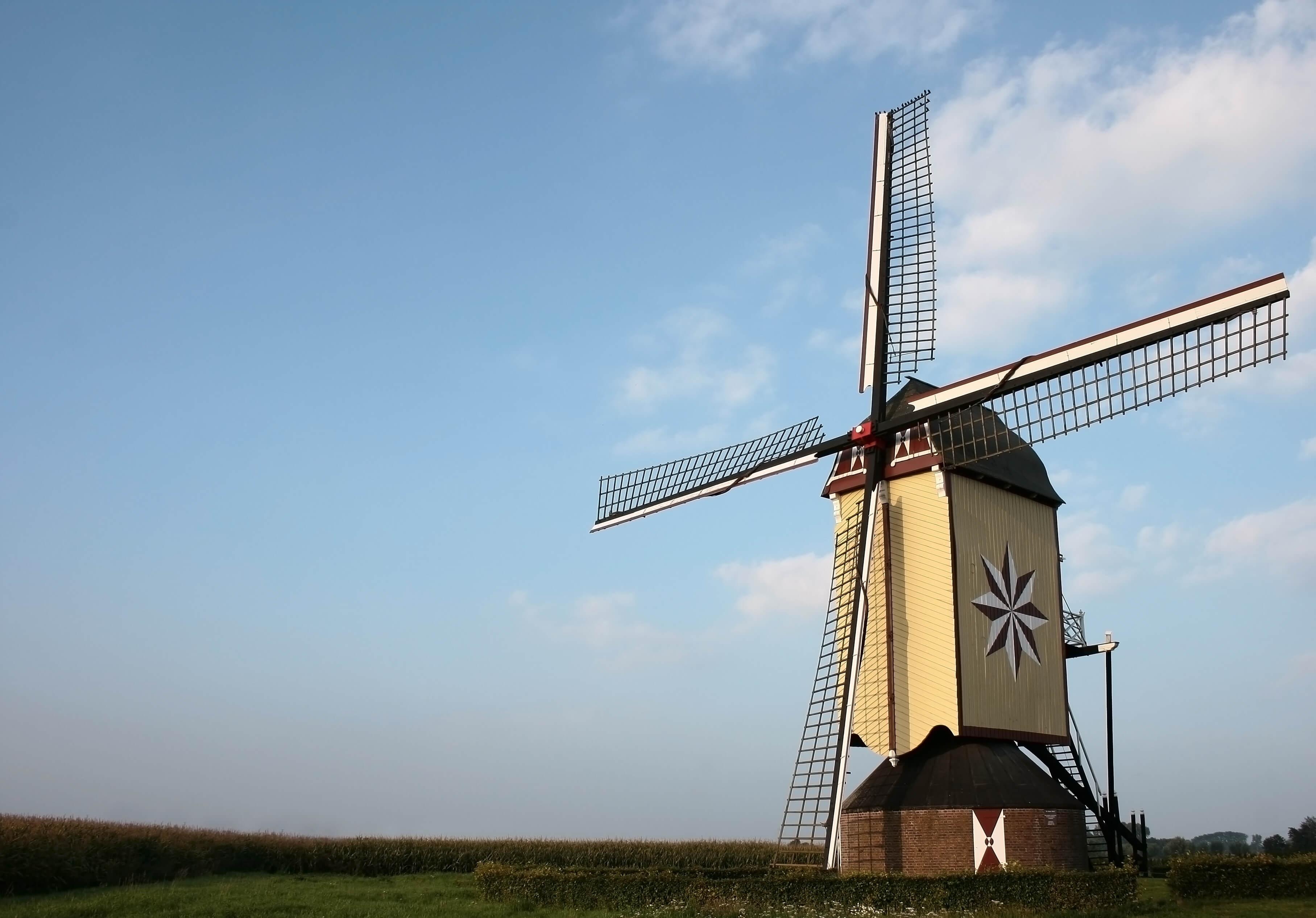 Numer BSN w Holandii – gdzie go można wyrobić?