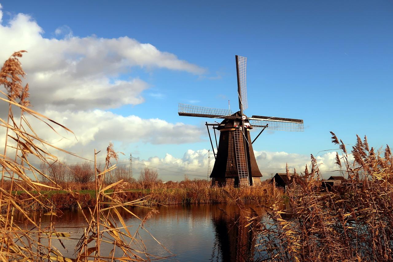 5 lat na rozliczenie podatku z Holandii